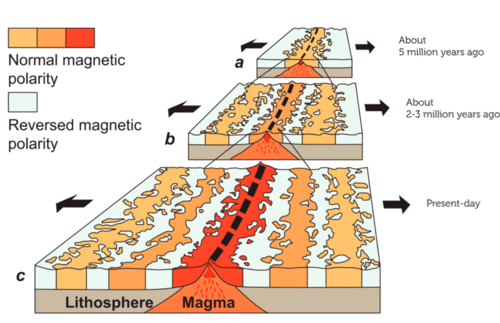 Magnetic patterns in seafloor spreading proves that magnetic reversals occur