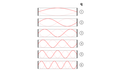 Longitudinal Waves Quiz
