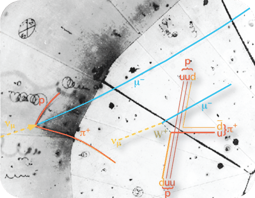 Particle trails of the first observed neutrino
