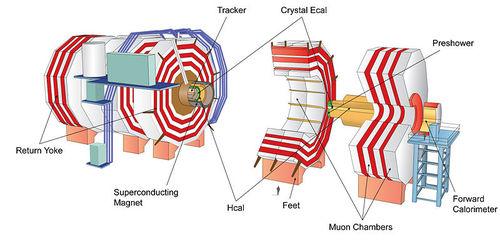 Schematic of the Compact Muon Solenoid Detector, CERN, Geneva, Switzerland