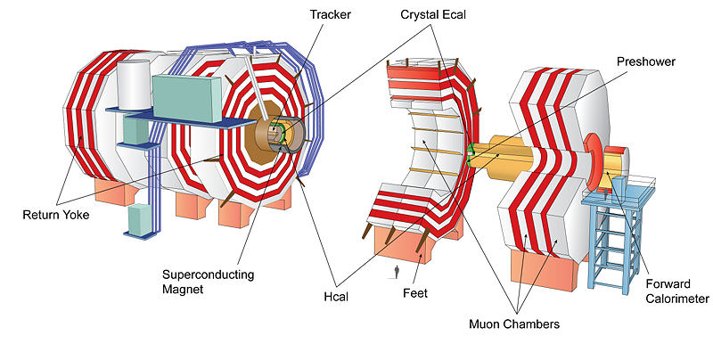 Schematic of the Compact Muon Solenoid Detector, CERN, Geneva, Switzerland