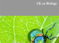 Biology - thumbnail