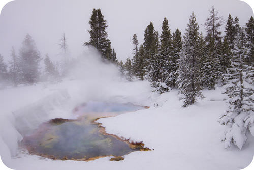 Hot spring in Yellowstone during winter