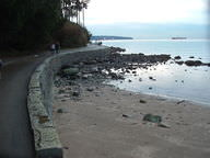 A seawall protecting a shore