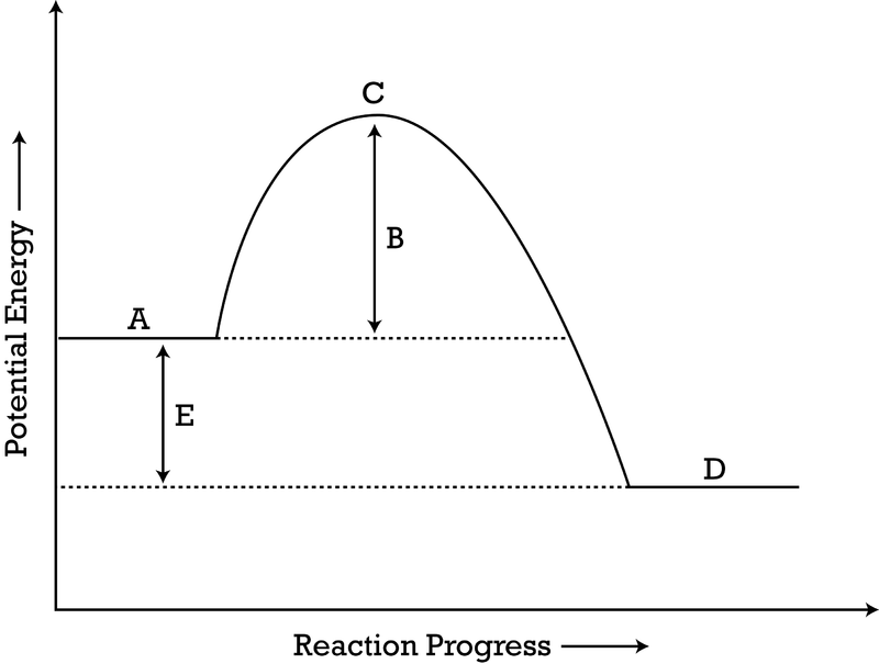 Potential Energy Diagrams Ck 12 Foundation