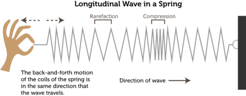 Diagram of a longitudinal wave
