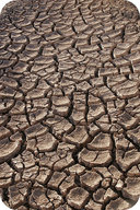 Picture of drought cracked land