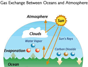 Gas exchange between the oceans and the atmosphere