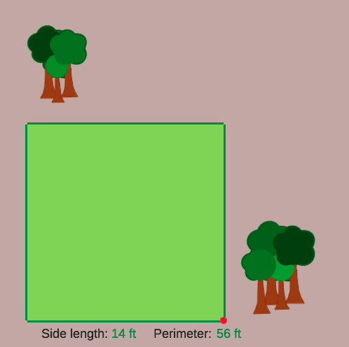 Evaluation of Perfect Square Roots: Neighborhood Park