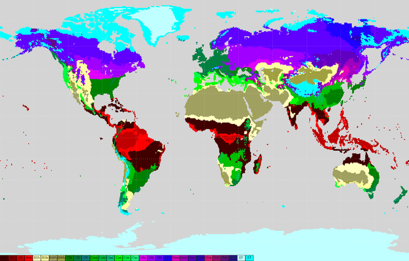 Map of the world's biomes