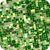 Satellite image of farms using central pivot irrigation