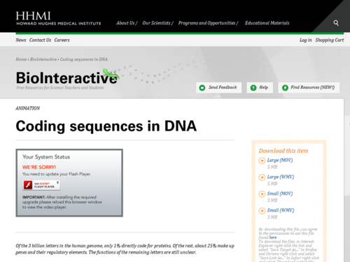 Coding Sequences in DNA