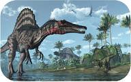 Reptile Evolution