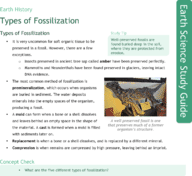 Types of Fossilization Study Guide