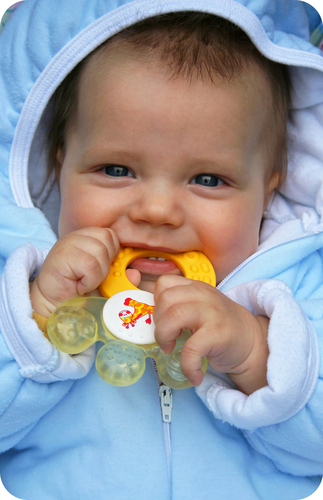 Babies often chew on toys and other objects when they get their first new teeth