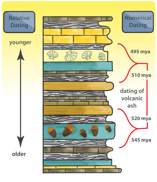 What is Relative Dating? - Law of Superposition, Principles of Original Horizontality & Cross-Cutting Relationships