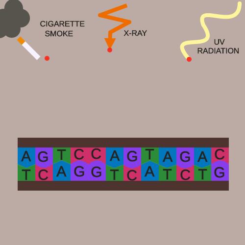 Mutation Causes