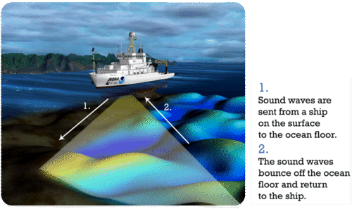 The Ocean Floor Ck 12 Foundation
