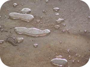 Mercury is a liquid at room temperature