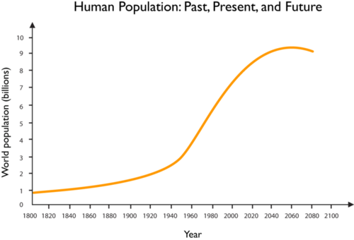 Projection of Earth's population growth