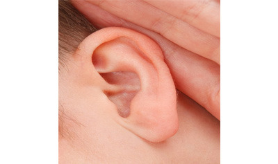Hearing and the Ear Quiz - MS PS
