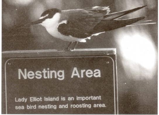 Conserving Biological Diversity