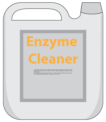 Enzymes as Catalysts
