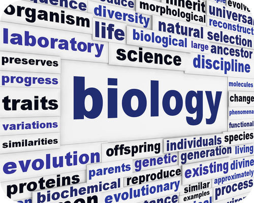 year 12 biology textbook heinemann pdf