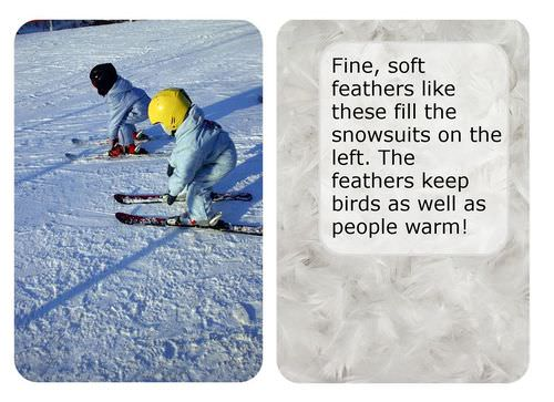 Insulators help snowsuits keep heat in