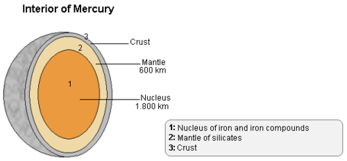 Mercury contains a thin crust, a mantle, and a large, liquid core that is rich in iron