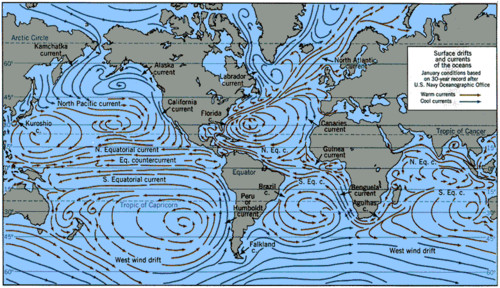 The Coriolis effect causes winds and currents to form circular patterns