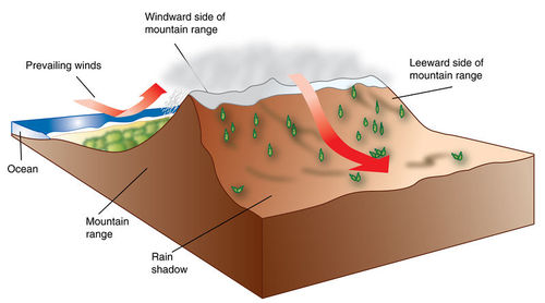 This diagram shows how precipitation is affected by the ocean and a mountain range