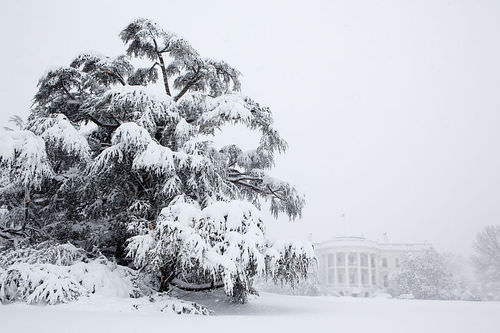 Blizzard in Washington D.C.