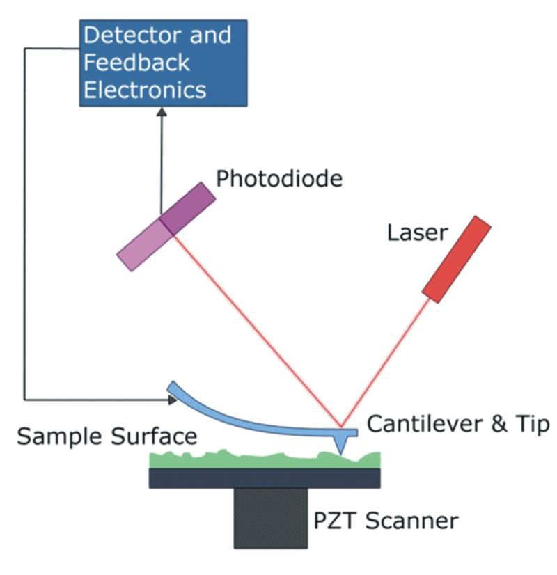 Block Diagram of Atomic Force Microscope (AFM)