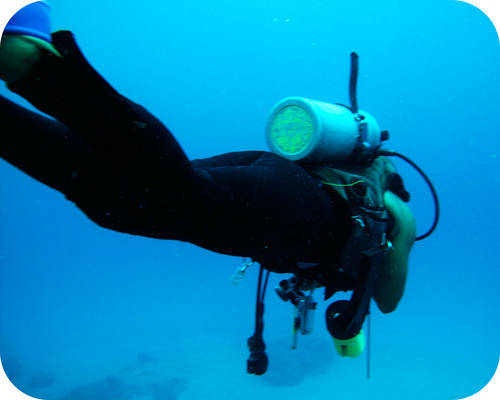 The pressure in a scuba tank is typically 200-300 atmospheres