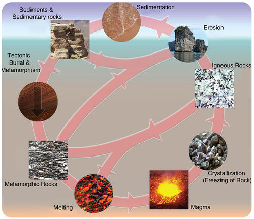 Rocks and Processes of the Rock Cycle | CK-12 Foundation