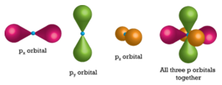 Illustration of the three p orbitals