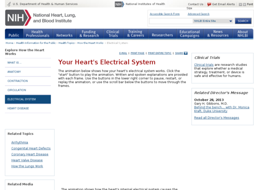 Your Heart's Electrical System