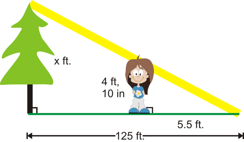 Indirect Measurement : CK-12 Foundation