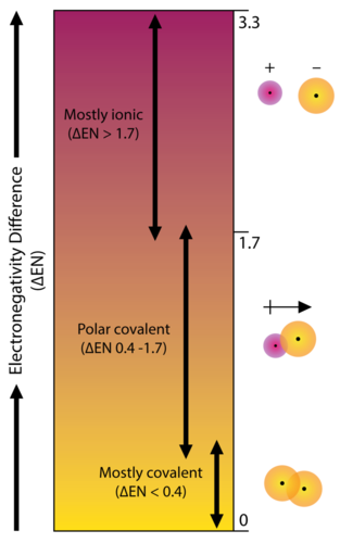Polarity And Intermolecular Forces Ck 12 Foundation