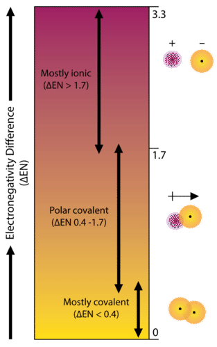 5 3: Polarity and Intermolecular Forces - Chemistry LibreTexts