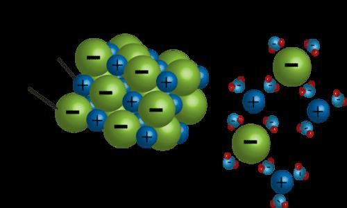 diagram showing how salt dissolves in water