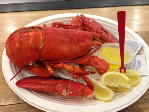Lobsters are an arthropod food source