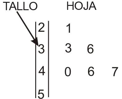 Diagramas de Tallo-Hoja e Histogramas | CK-12 Foundation