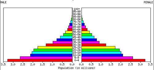 A population pyramid