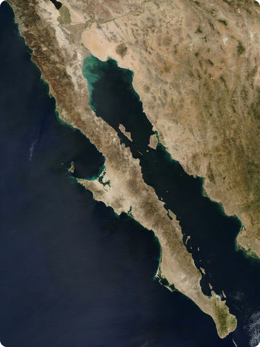 Baja California is rifting apart from Mainland Mexico