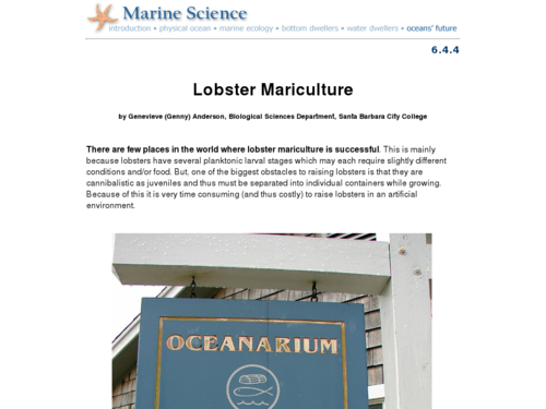 Lobster Mariculture
