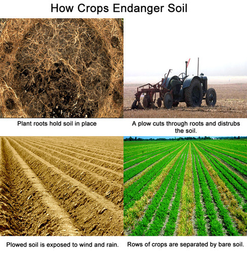 How farming can increase soil erosion