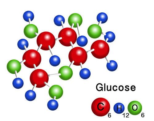 Structure of a glucose molecule