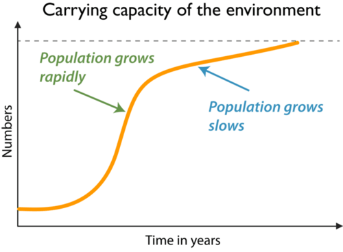 A logistic growth curve